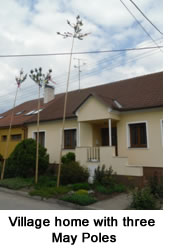 Village home with three May poles